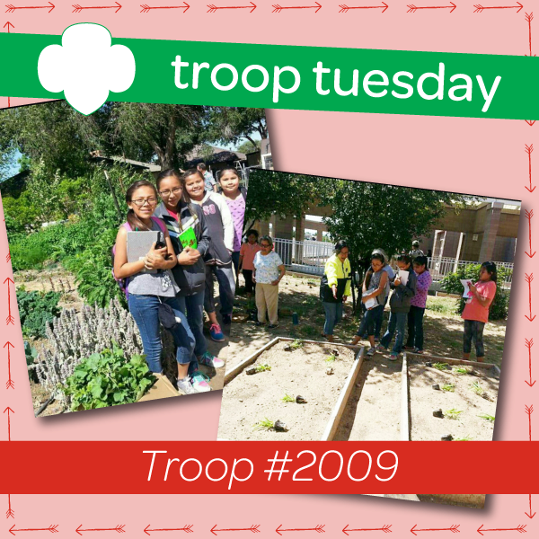 troop tuesday girl scouts transform garden into gifts